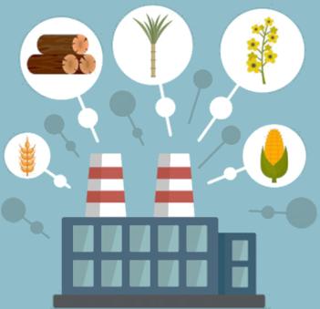 bio-feedstock2